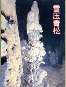 贵州织金洞国家地质公园