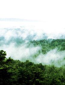 黑龙江伊春花岗岩石林国家地质公园